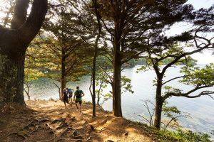 Anse Saint-Laurent course à pieds