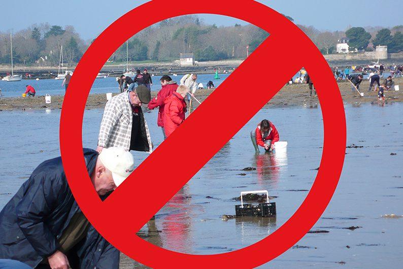 Pêche à pied interdite