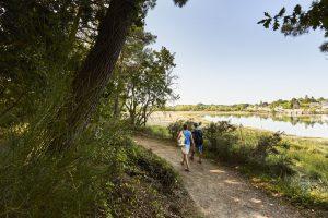 Promenade le long de l'anse de La Forêt