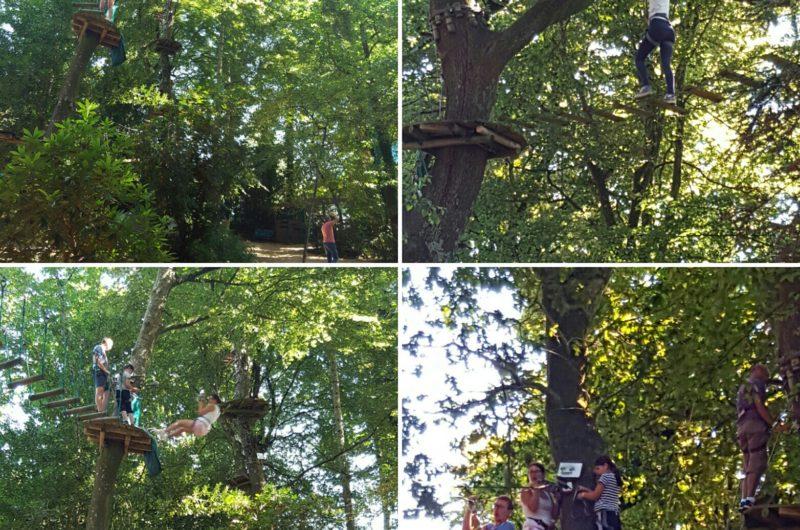 Bonobo Parc photostudio_1480518641621