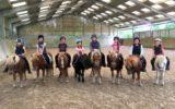 ecuries-locamaria-equittaion-cheval-poney-saint-yvi–1-