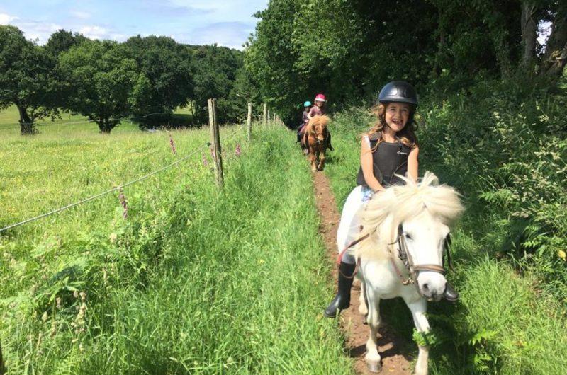 ecuries-locamaria-equittaion-cheval-poney-saint-yvi–3-