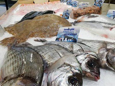 les-poissons-de-nicolas-poissonnerie-la-foret-fouesnant