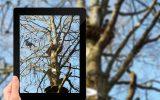 photostudio_1480522399384